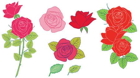 Roses and hand-drawn illustration variations set