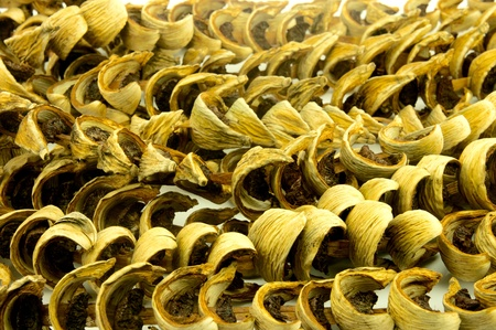 Slice Dried Betel Nut or Areca nut Stock Photo - 13290686
