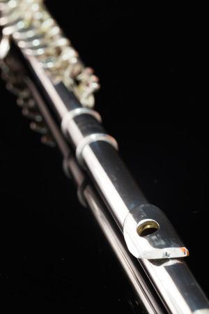 boehm flute: flauta