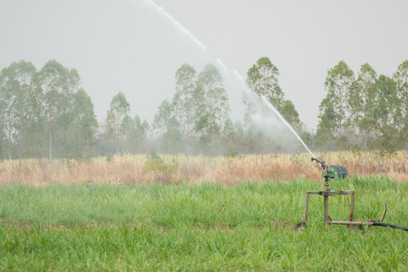 Water springer turning and watering the green grass Stock Photo