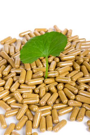 asiatica: Herbal medicine from Centella asiatica