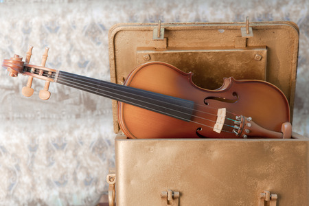 fingerboard: violin - still life with a wooden figure