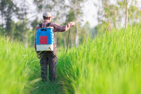 toxicity: spraying pesticide