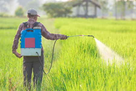 unprotected: spraying pesticide