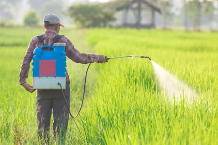 Spuiten van pesticiden Stockfoto - 45838945
