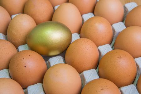 golden egg: golden egg