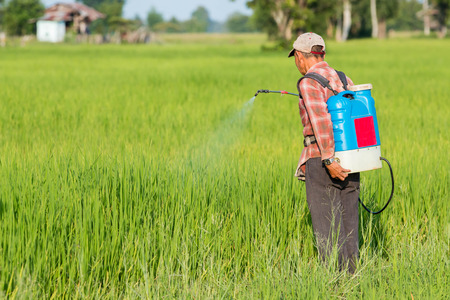 Spuiten van pesticiden Stockfoto - 45840504