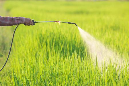Spuiten van pesticiden Stockfoto - 45840518