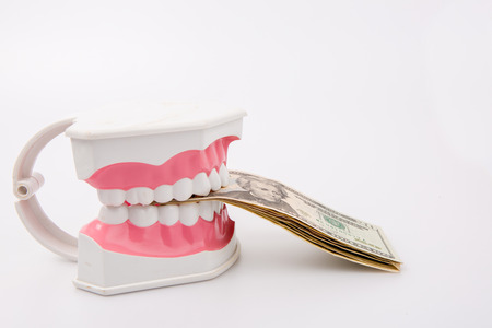 pracitioner: A tooth model with dollar notes isolated on white background