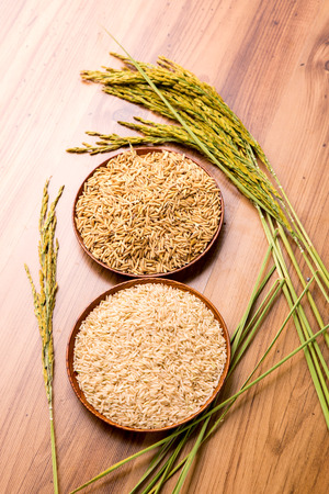 paddy and brown rice on the wooden plate and rice plant