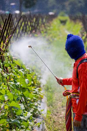 riesgo quimico: pulverizaci�n de pesticidas Foto de archivo