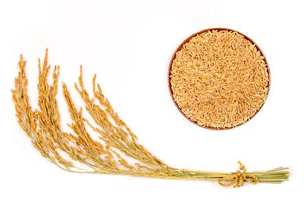 arroz en el fondo blanco