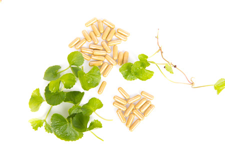 Herbal Thankuni leaves of indian subcontinent, Centella asiatica,gotu kola on white background,