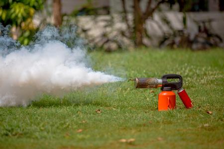 albopictus: small fogging for dengue control