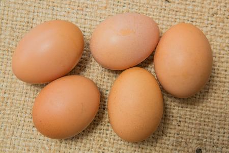 sackcloth: raw eggs on sackcloth background
