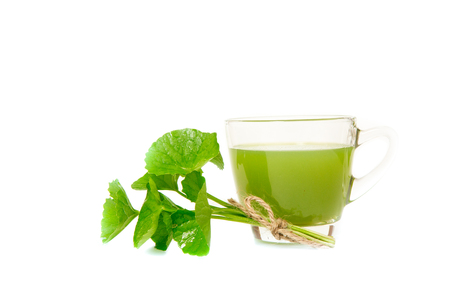 laxative: Gotu kolas leafs drink ,gotu kola leafs on white background