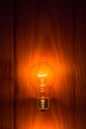 electric bulb: electric bulb on wooden background