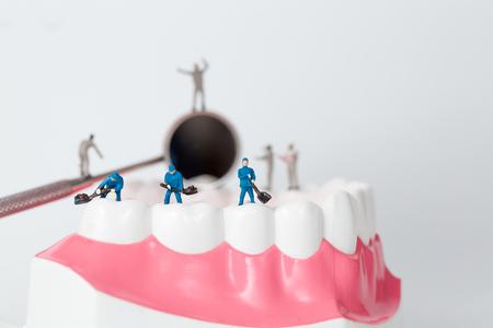 Mensen om het tandmodel schoon te maken, miniatuur Stockfoto - 69616270