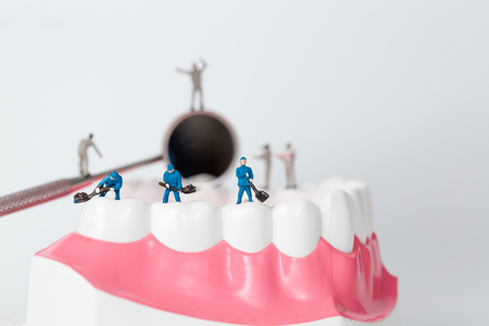 People to clean tooth model,miniature
