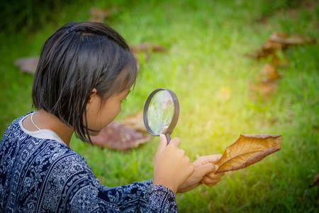asian girl explore tree with magnifying glass
