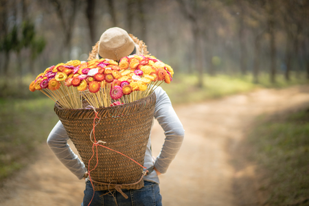 beautiful woman with  basket of colorful flower walking in the forest