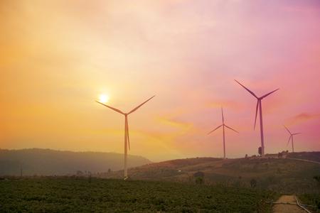 Wind turbine farm with sunset background