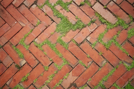 brick background with grass,top view