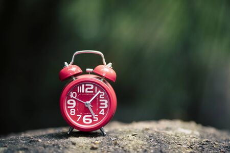Red alarm clock in forsest with sunlight Stockfoto