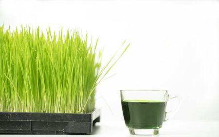 wheatgrass and juice on white background Stock Photo
