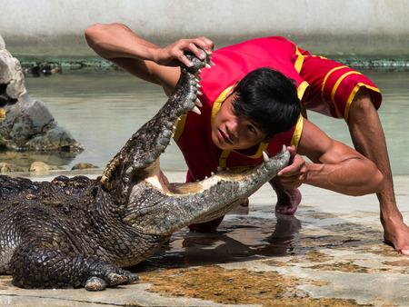 samutprakarn: SAMUTPRAKARN, THAILAND  : 24 July 2016 crocodile show at Samutprakarn crocodile farm & zoo at Wat ArunRatchawararam Editorial
