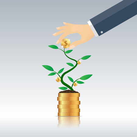 harvest Money from the money tree, business concept