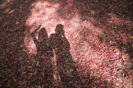 happy moment: man and girl shadow on a red dry leave with sun light on a midlle of picture, shadow of lovers couple,happy moment