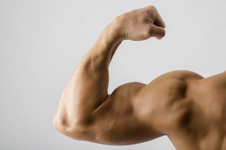 musculoso: Cierre en un bíceps culturista, el hombro, el brazo