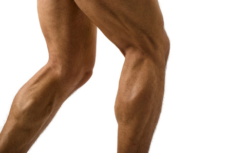 leg muscle fiber: Close up on muscular bodybuilder male legs