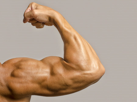 Close up on a bodybuilder biceps,shoulder,arm