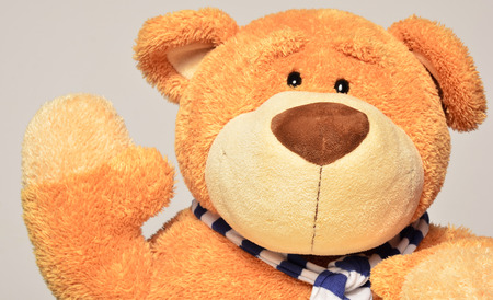 wanting: Teddy bear wearing a blue scarf holding a hand up wanting to say something