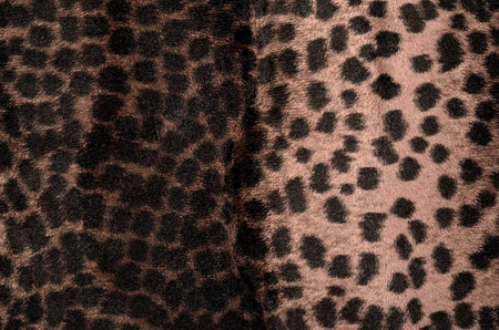 Animal print as background.