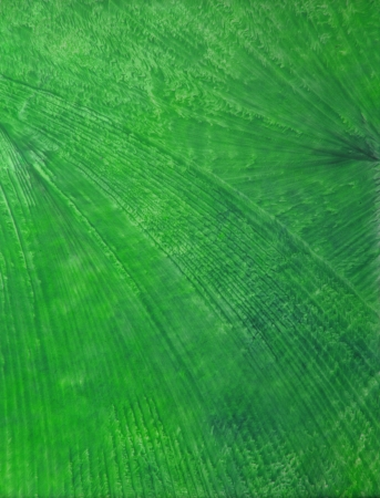 encaustic: Abstract hand drawn paint background  green leaf-like patterns