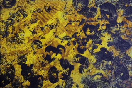 encaustic: Abstract hand drawn paint background  yellow and black panther-like patterns  Great for art texture, grunge design, and vintage paper