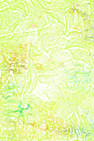 Abstract textured background  green floral patterns on white backdrop  For art texture, grunge design, and vintage paper   border frame photo