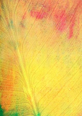 Spadek liści jak stylu background: czerwony, zielony i żółty wzory imitujące fakturę liści. Do projektu grunge, tapeta, vintage, i abstrakcyjne rama, photo