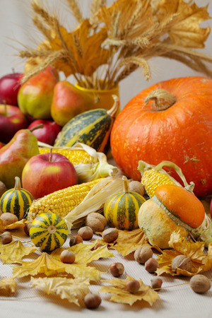 Autumn holiday Thanksgiving. Still life with pumpkin and apples, pears and nuts, cones and leaves. Stock Photo