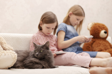 Two little girls (sisters 7 and 8 years old) are watching an e-book and a smartphone at home on the sofa with their cat. Selective focus.