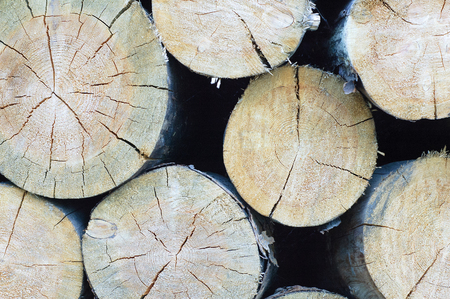 Folded logs stacked on top of each other. Close-up.