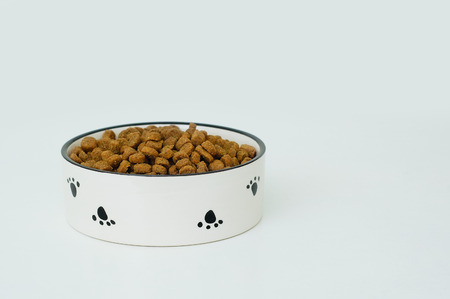 Ceramic bowl with dry dog bag feed. Close-up. White background.