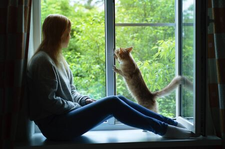 A young Caucasian woman and a ginger cat on a windowsill are looking out into the street. Standard-Bild