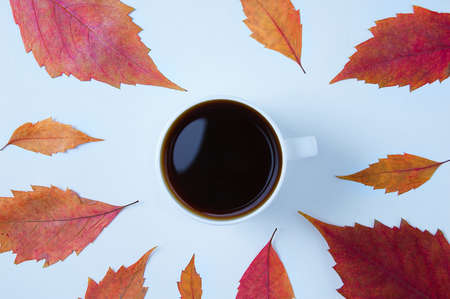 White cup with black coffee without foam. White background with autumn leaves.