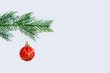 Christmas branch of a Christmas tree with ice floes and a red ball on a gray background. Banque d'images