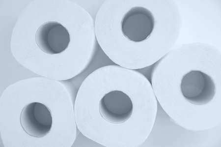 Rolls of toilet paper. White background. View from above.