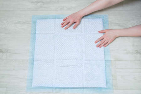 Hygienic absorbent pad for litter dogs on the floor. 스톡 콘텐츠 - 163849131